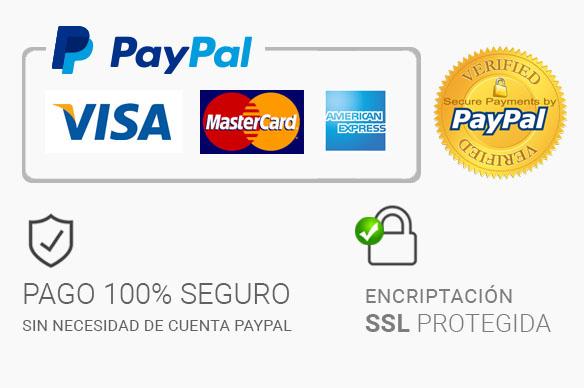 pago-paypal-seguro